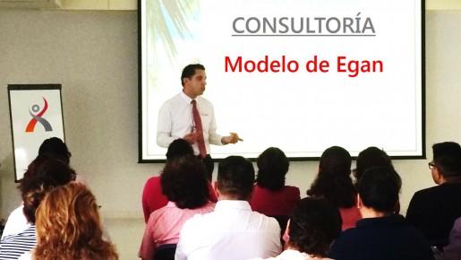 CONSULTORÍA: MODELO DE EGAN.